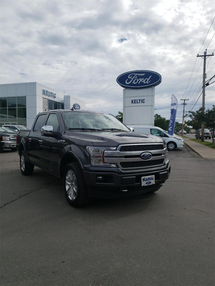 Ford F-150 Platinum Inventory Image