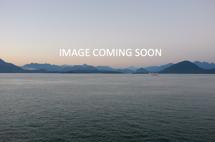 Hyundai Ioniq Electric Preferred Inventory Image