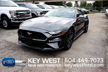 Ford Mustang GT Premium Convertible Safe & Smart Pkg B&O Audio Inventory Image