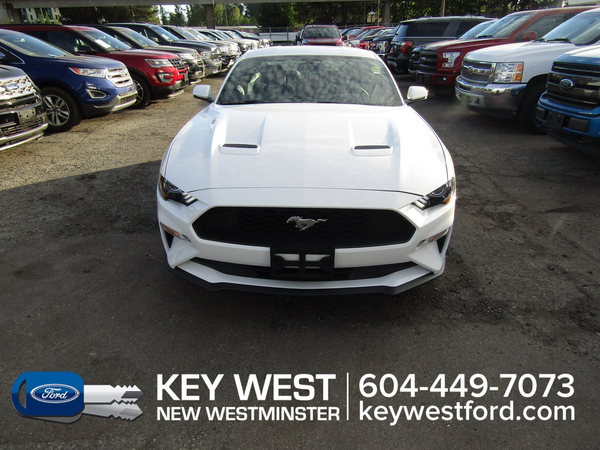 Ford Mustang EcoBoost Premium B&O Audio Leather Nav Cam Sync 3 Vehicle Details Image