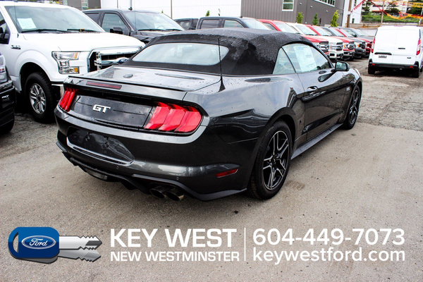 Ford Mustang GT Premium Convertible Safe & Smart Pkg B&O Audio Vehicle Details Image