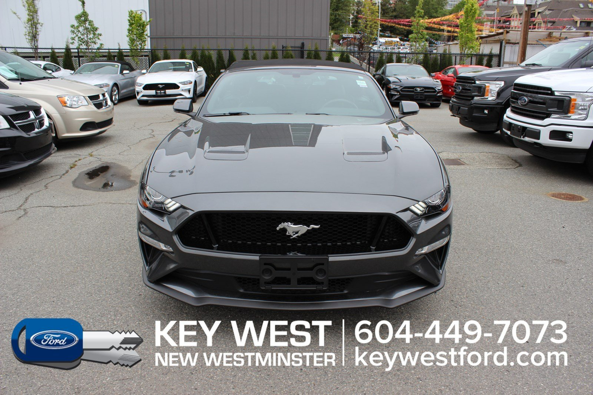 Ford Mustang Vehicle Details Image
